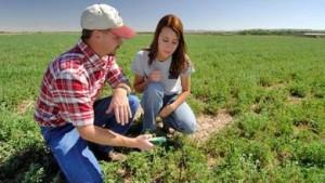 giovani_agricoltori